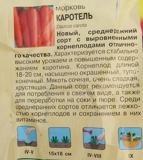 Морковь КАРОТЕЛЬ отзывы и фото урожая