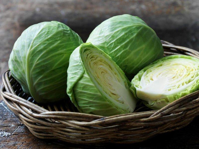 Когда сажать брокколи и цветную капусту