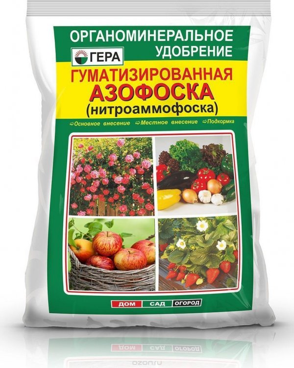 Как применять минеральное удобрение азофоску для картофеля
