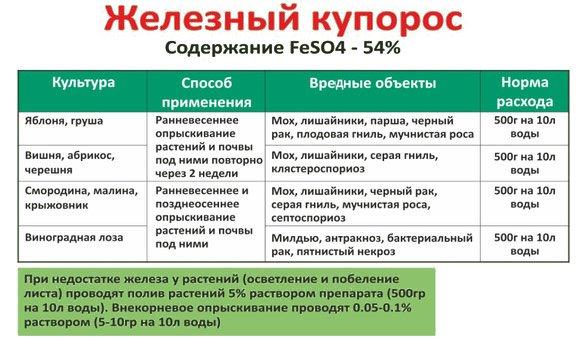 Железный купорос (сульфат железа): применение в садоводстве и на огороде