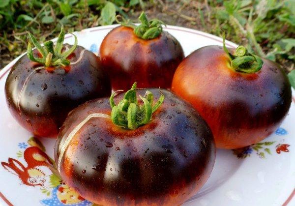 Сорта черных томатов: описание и характеристика, фото и отзывы