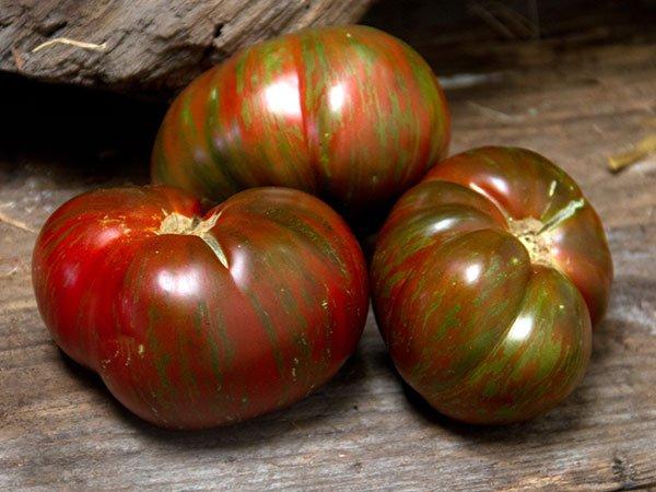 Томат Полосатый шоколад: описание оригинального сорта с черными полосками на плодах